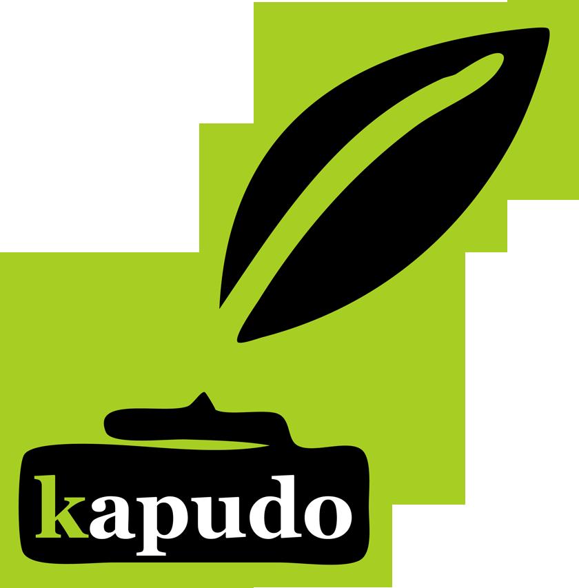 Logo kapudo IT-Studio